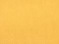 trinity-18_yellow