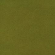 Trinity - 12_Green