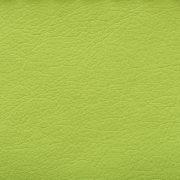 L.Green-