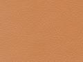 small_shop_items_catalog_image1791