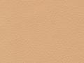 small_shop_items_catalog_image1802