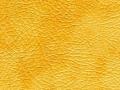 beige_gold_resize