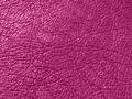 rainbow-purple